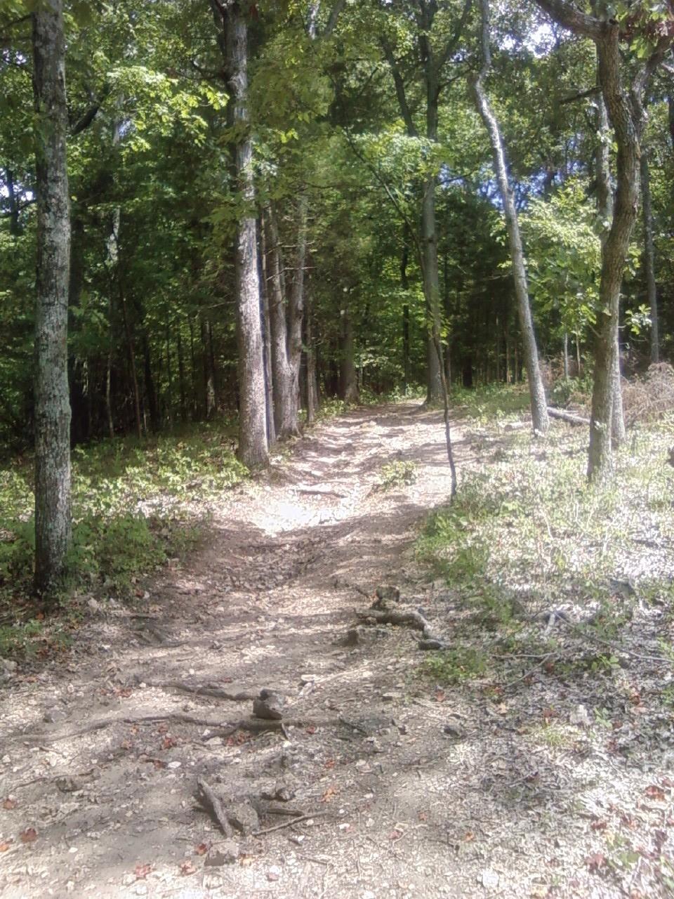 trail ahead 2009